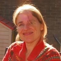Dr.ir. I.J.E. (Ingrid) Vleghels, Secretary